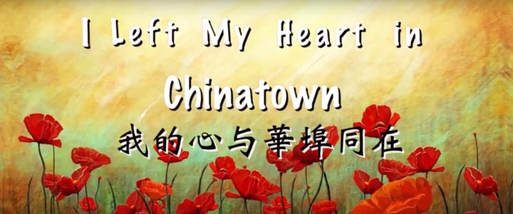 i left my heart in chinatown jaiyi li